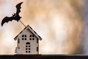 家とコウモリ