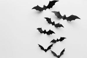 複数で羽ばたくコウモリ