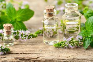 ペパーミントの花とエッセンシャルオイル