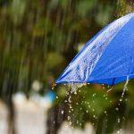 雨と青い傘