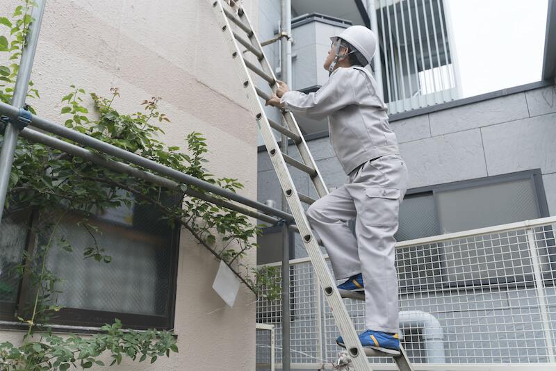 梯子を登って作業する作業員